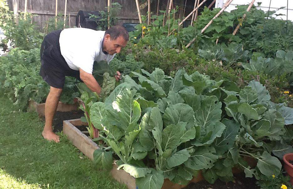 Gary Camillo in the garden